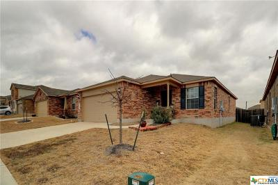 Killeen Single Family Home For Sale: 9208 Sandyford Court