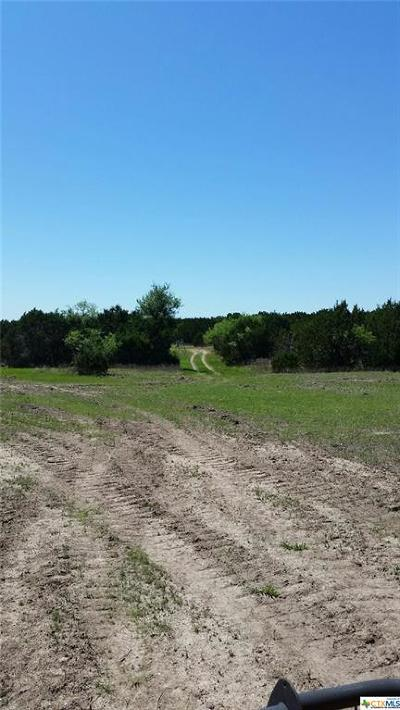 Bell County, Burnet County, Coryell County, Lampasas County, Llano County, McLennan County, Mills County, San Saba County, Williamson County Residential Lots & Land For Sale: Tract D County Road 3421