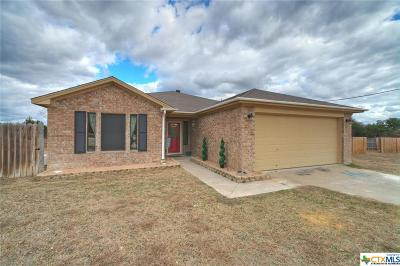 Lampasas County Single Family Home For Sale: 377 County Road 4450