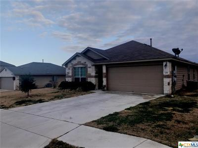San Marcos Single Family Home For Sale: 226 Goldenrod