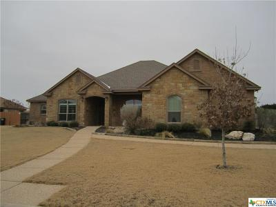Salado Single Family Home For Sale: 2717 Winners Circle