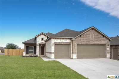 New Braunfels Single Family Home For Sale: 657 Osprey