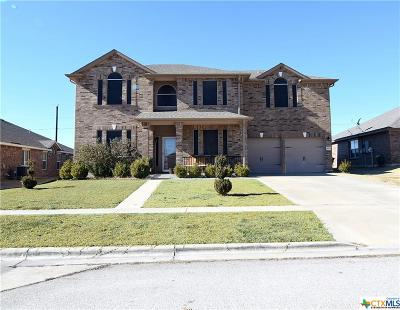 Killeen Single Family Home For Sale: 4919 Birmingham