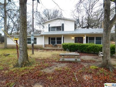 Kempner Single Family Home For Sale: 315 Private Road 3115
