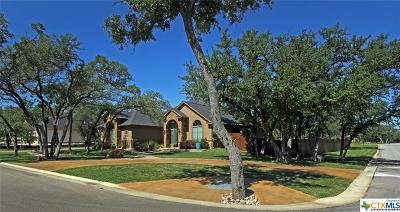 Belton Single Family Home For Sale: 12 Sereno Vista Ln.