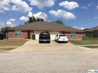 Killeen Multi Family Home For Sale: 3207 Raven Dr