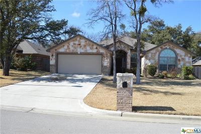 Belton Single Family Home For Sale: 3209 Purple Sage