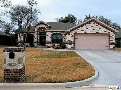 Belton Single Family Home For Sale: 3203 Purple Sage
