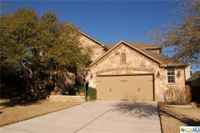 Austin Single Family Home For Sale: 135 Dry Run #115