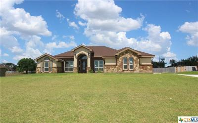 Lampasas County Single Family Home For Sale: 210 Cr 4774