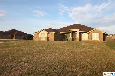 Lampasas County Single Family Home For Sale: 214 Cr 4774