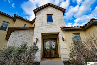New Braunfels Single Family Home For Sale: 10319 Teich Loop