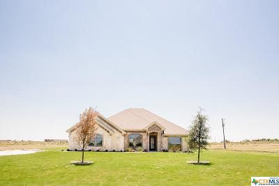 Lorena TX Single Family Home For Sale: $324,900