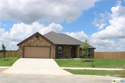 Killeen Single Family Home For Sale: 9915 Kaitlyn Drive