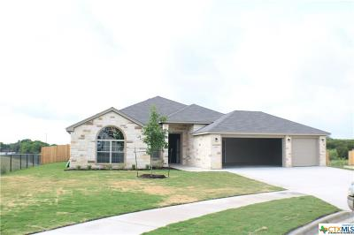 Killeen Single Family Home For Sale: 9917 Kaitlyn Drive