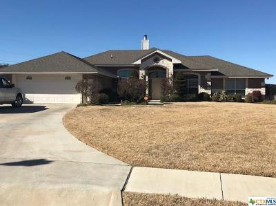 Killeen TX Single Family Home For Sale: $233,750