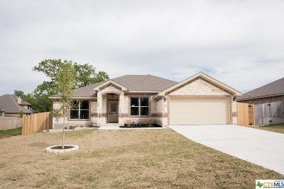 Belton Single Family Home For Sale: 3044 Mystic Mountain Drive