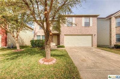 San Antonio Single Family Home For Sale: 11303 Oro Canyon