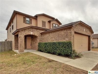 Kyle Single Family Home For Sale: 490 New Country