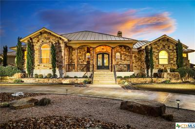 New Braunfels Single Family Home For Sale: 1670 Decanter Drive