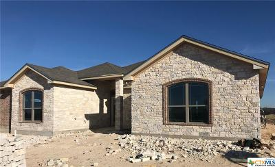 Coryell County Single Family Home For Sale: 108 Northern