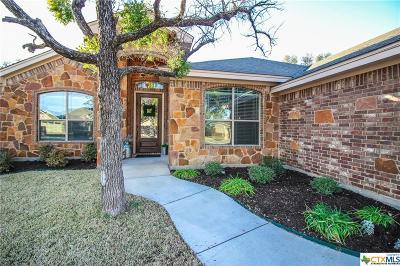 Belton Single Family Home For Sale: 3207 Wildcatter Drive