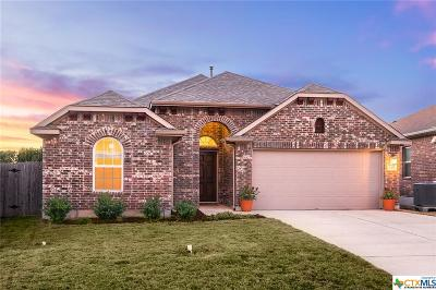 San Marcos Single Family Home For Sale: 137 Pincea