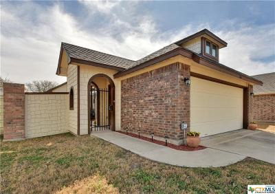 San Marcos Single Family Home For Sale: 246 Silo