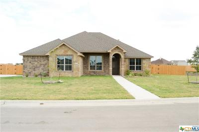 Salado Single Family Home For Sale: 4109 Big Brooke Drive