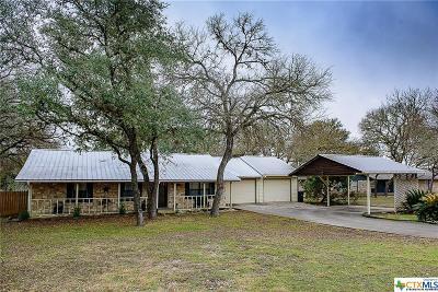 San Marcos Single Family Home Pending Take Backups: 118 Lazy