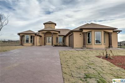 Kyle Single Family Home For Sale: 238 Peck