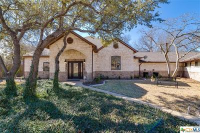 Belton Single Family Home Pending Take Backups: 650 Benchmark Trail