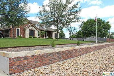 Kempner Single Family Home For Sale: 180 County Road 4773