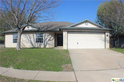 Killeen Single Family Home For Sale: 3409 Levy Lane