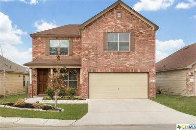 San Antonio Single Family Home For Sale: 10323 Fort Davis Trail