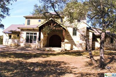 Canyon Lake Single Family Home For Sale: 1313 Ensenada Drive