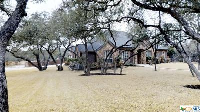 Belton Single Family Home For Sale: 8 Vista De Luna Lane