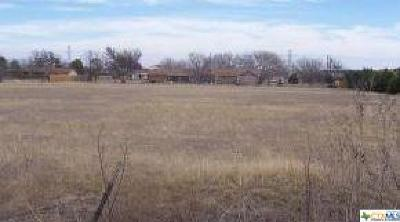 Killeen Commercial For Sale: 4500 Ws Young Drive