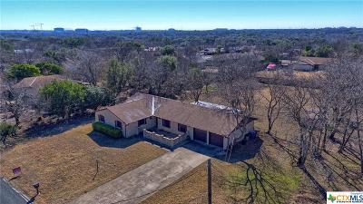 Austin Single Family Home For Sale: 5203 Branding Chase Street
