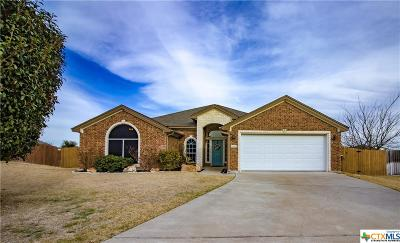 Belton Single Family Home For Sale: 3114 Pitchfork
