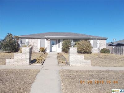 Killeen Single Family Home For Sale: 4113 Sand Dollar Drive
