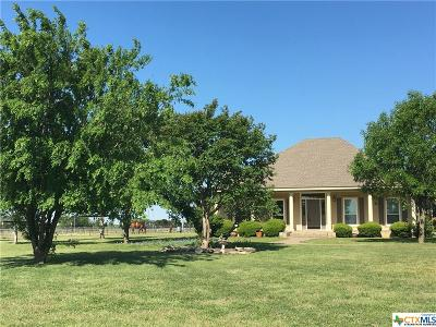 Salado Single Family Home For Sale: 9652 Stinnett Mill Road