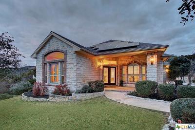 Austin Single Family Home Pending Take Backups: 9000 Westminster Glen