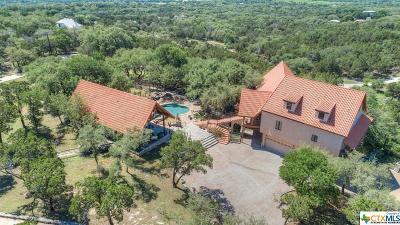 New Braunfels Single Family Home For Sale: 289 Oak Ridge