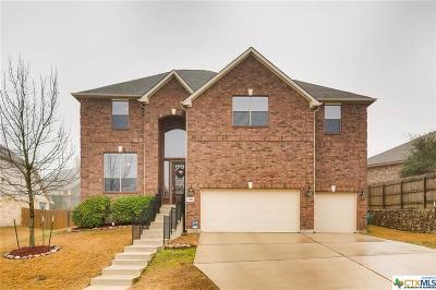 San Antonio Single Family Home For Sale: 3806 Forsythia
