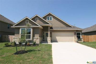 Cibolo Single Family Home For Sale: 416 Morgan Run