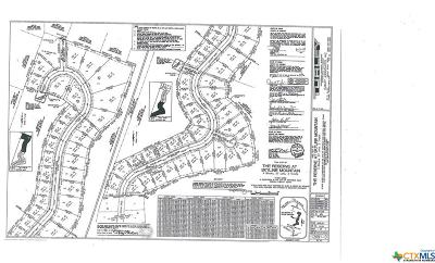 Copperas Cove Residential Lots & Land For Sale: 2704 Sun Point Circle