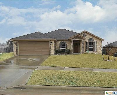 Killeen Single Family Home For Sale: 3801 Flat Rock Mountain
