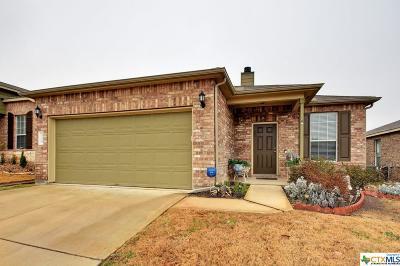 Buda Single Family Home For Sale: 533 Moonwalker Trail