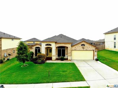 Killeen Single Family Home For Sale: 402 Sandra Sue Drive